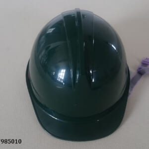 M007985010 (1)